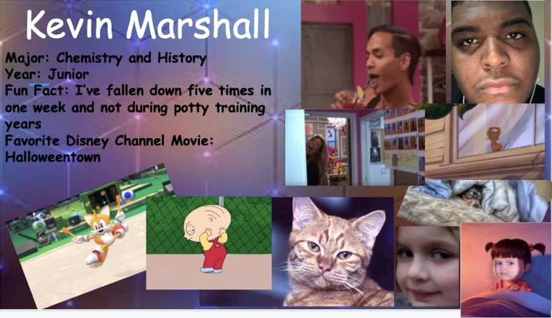 Kevin Marshall powerpoint.png